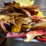 10 Tipps für den Herbstputz