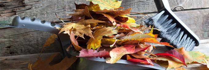 10 Tips für den Herbstputz