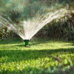 Gartenbewässerung im Sommer
